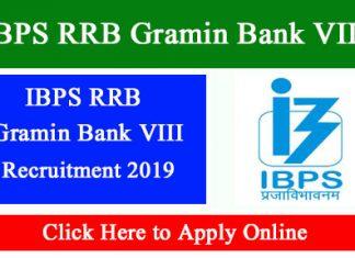 IBPS RRB Gramin Bank VIII
