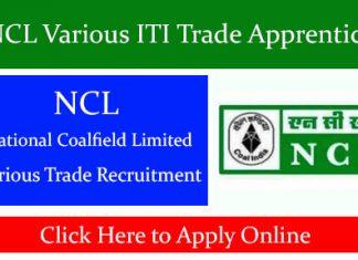 NCL Various ITI Trade Apprentice