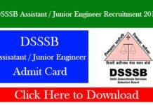 DSSSB Assistant / Junior Engineer