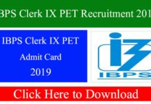 IBPS Clerk IX PET Recruitment 2019