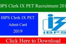 IBPS Clerk IX PET Recruitment 2019