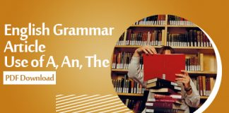 English Grammar Article