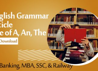 English Grammar Article