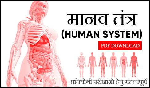 मानव तंत्र